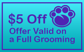 $5 Off - Offer Valid on a Full Grooming
